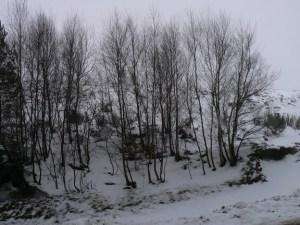 dim-neige-44